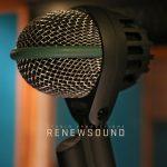 Renewsound Microphones AKG D112