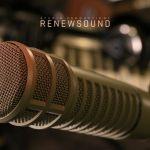 Renewsound Microphones EV RE20