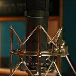 Renewsound Microphones Neumann U87Ai