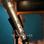 Renewsound Mecrophones Audix i5
